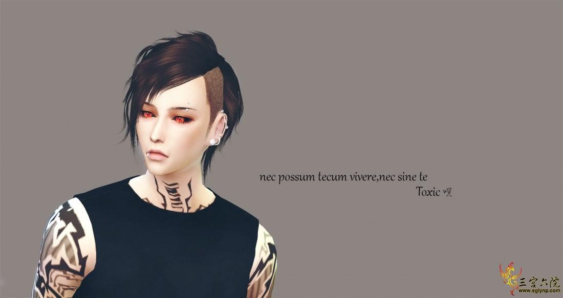 【Toxic】nec possum tecum vivere,nec sine te