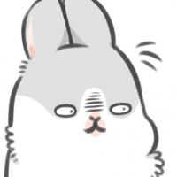 筆兒兔超聰明